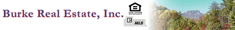 Burke Real Estate, Inc. - Realty in Burke